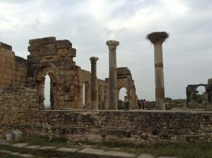 CHINA MOROCCO TRIPS - ROMAN RUINS - VOLUBILS MEKNES FROM FES CITY DAY TRIPS