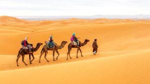 best morocco trips